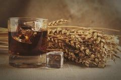 Glass whiskey on background with wheat straws toning photo Stock Photos