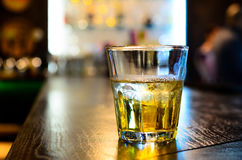 Glass of whiskey on a bar counter Stock Images