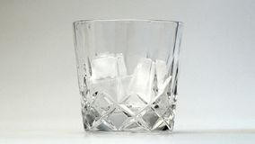 Glass of whiskey stock video