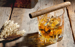 Glass of whiskey with ice and barley spikelets Royalty Free Stock Image