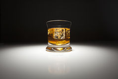Glass of Whiskey and Ice Under Spot Light. Royalty Free Stock Image