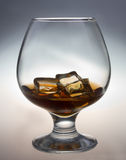 Glass of whiskey. Glass tumbler of whiskey with ice cubes Royalty Free Stock Image