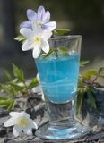 Glass whit alcohol Royalty Free Stock Image