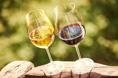 Glass of white and red whine Stock Photos