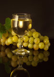 Glass of white wine. Royalty Free Stock Image