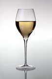 Glass with white wine. HQ studio shot. Camera: Canon EOS 5D Mark II Stock Image