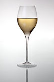 Glass with white wine. HQ studio shot. Camera: Canon EOS 5D Mark II Stock Images