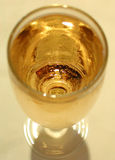 Glass of white wine. A close up of a glass of white wine Royalty Free Stock Photos