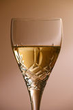 Glass of white wine. Close up of a crystal glass containing white wine against a plain background Stock Images
