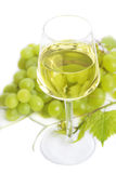 Glass of white wine Royalty Free Stock Image
