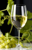 Glass of white wine. White wine with grapes and a glass of wine poured Royalty Free Stock Images