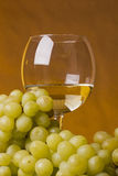 Glass of of white wine Royalty Free Stock Photo