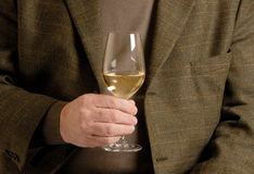 A Glass of White Wine royalty free stock images
