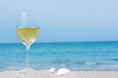Glass of white wine royalty free stock images