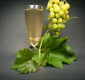 Glass white wine on black back Royalty Free Stock Photo