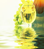 Glass of white wine and a bottle Royalty Free Stock Images
