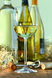 Glass of white wine with bottles stock photo