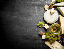 Glass of white wine with different cheeses , grapes and nuts. Royalty Free Stock Photos