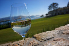 Glass of white wine reflecting golf course Stock Images