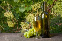 Glass of white wine and empty glass, bottle, bunch of grapes on old wooden table against vineyard stock photography