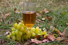 Glass of white wine with fruits stock photography