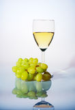 Glass of white wine and grapes Stock Images