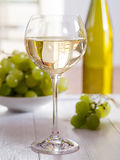 A glass of white wine Royalty Free Stock Photos