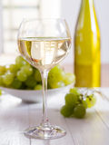 A glass of white wine. With grapes in the background Royalty Free Stock Photo