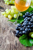 Glass Of White Wine And Grapes Royalty Free Stock Photography
