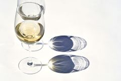 Glass of white wine in the sunlight  with shadow effect and a empty copy space background Stock Photo