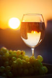 A glass of white wine at sunset, with the reflection of the houses. Royalty Free Stock Images