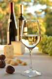 GLASS OF WHITE WINE ON A TABLE Royalty Free Stock Photography