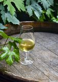 Glass of white wine on vintage old wooden barrel with grape leaves in the vineyard of Tenerife,Canary Islands,Spain. Copy space. Selective focus Stock Image