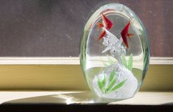 Glass Window Object. A glass egg shapped thingy on a windowsill stock images