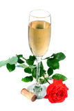 Glass of Wine. A glass of champagne with a red rose Royalty Free Stock Images