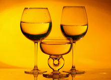 Glass wine Royalty Free Stock Image