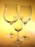Glass wine Stock Photography