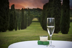 Glass of wine. A beautiful park at sunset and a glass of wine on a table Royalty Free Stock Image