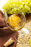 A glass of wine Royalty Free Stock Photo