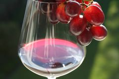 Glass wine Stock Images