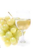 Glass wine royalty free stock photography