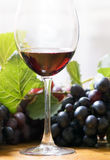 Glass of wine. Bottle and glass of wine Royalty Free Stock Images