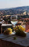 Glass wine on a background of mountains Royalty Free Stock Image