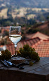 Glass wine on a background of mountains Stock Photo