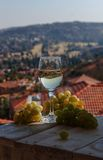 Glass wine on a background of mountains Stock Photos