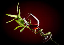 Glass with wine and  bamboo Stock Image
