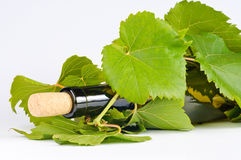 Glass Wine. Wine bottle in grape leaves isolated on white background Royalty Free Stock Image