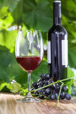 Glass of wine. Glass and a bottle of vintage red wine. Alcohol drink on a table. Outdoor shot Royalty Free Stock Image