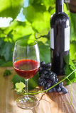Glass of wine. Glass and a bottle of vintage red wine. Alcohol drink on a table. Outdoor shot Stock Photo