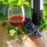 Glass of wine. Glass and a bottle of vintage red wine. Alcohol drink on a table. Outdoor shot Stock Photos
